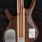 Alembic Series One 5-String bass